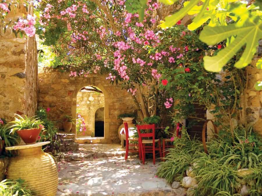 mediterranean-garden-plants